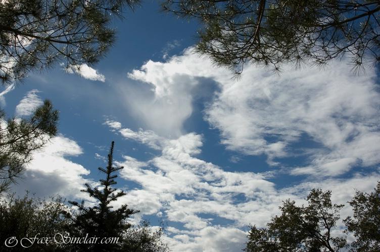 Cloudy Heart