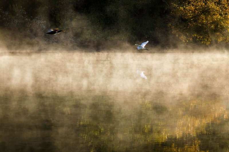 Passing In The Mist