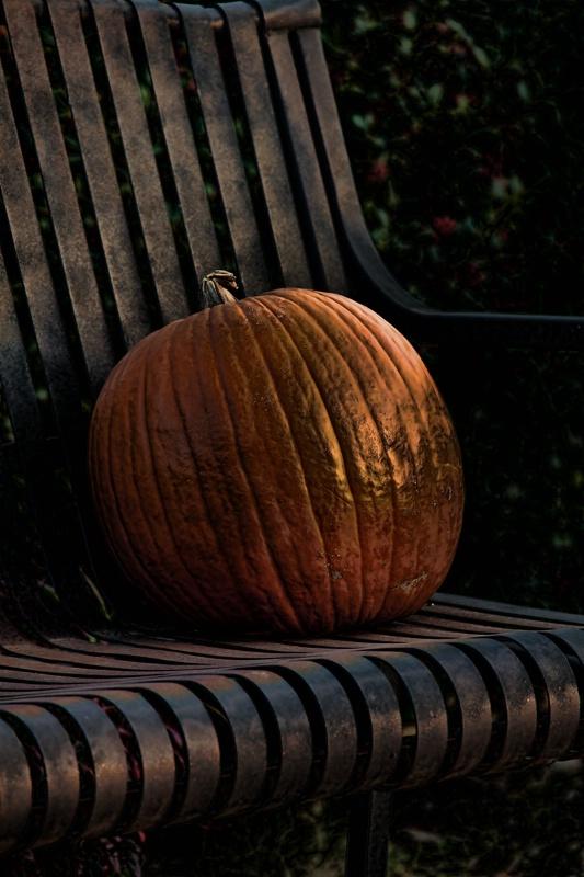 Autumn Concludes