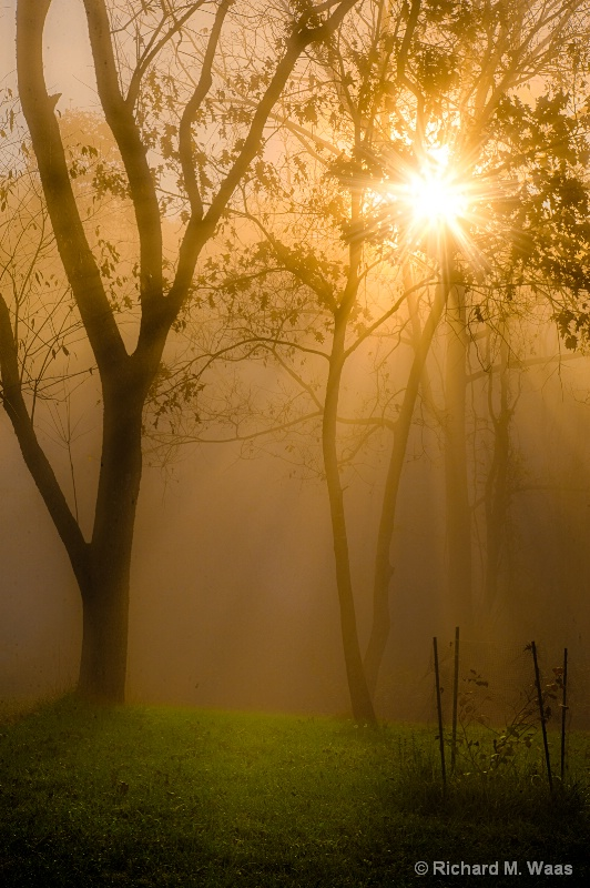 Dawn Through The Fog