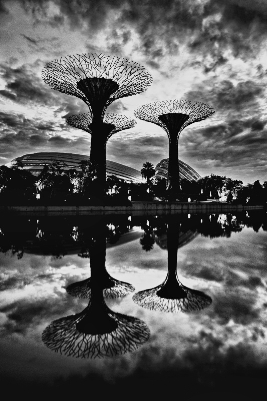 Gardens by the Bay in B&W HDR