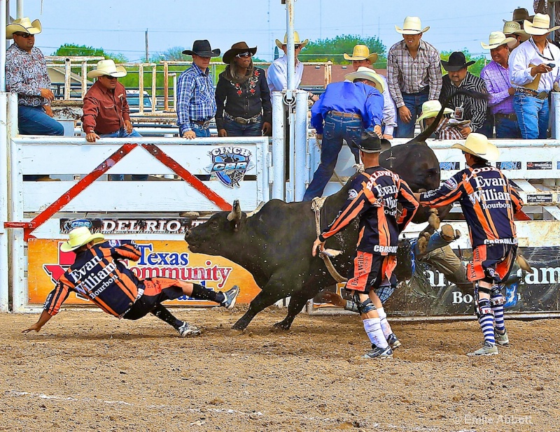 In honor of all Bull Fighters esp Cody Hollums