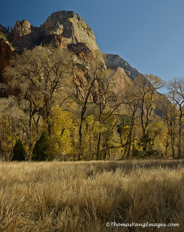 Zion Valley
