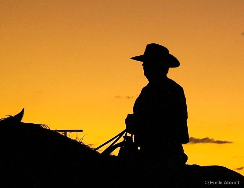 Solitary Rider
