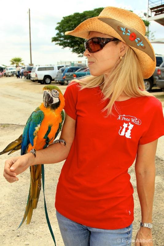 Macaw A pet wish