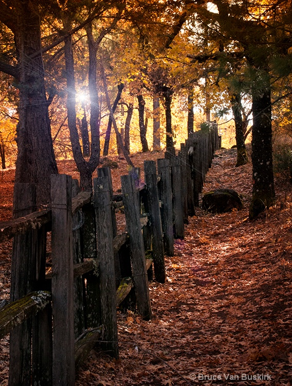 fall fence and star