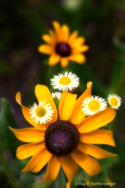 h0c8285 Flower13