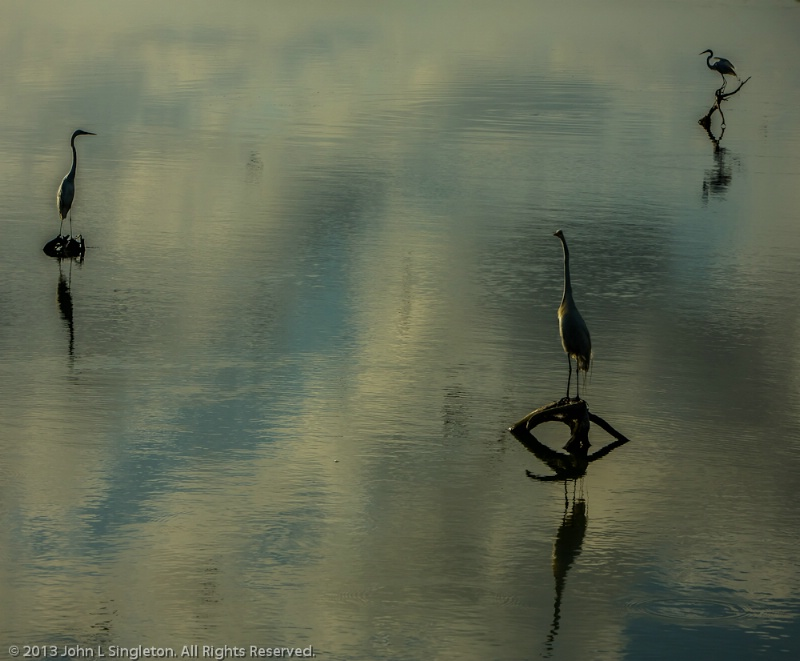 Trio Reflection