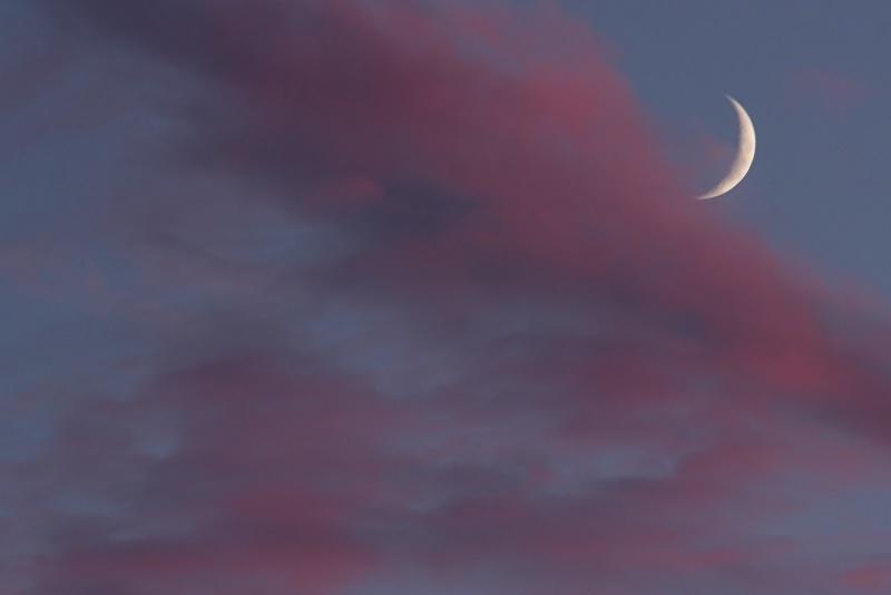 Crescent Moon at Sunset