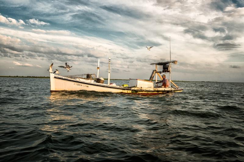 Smith Island Waterman #2
