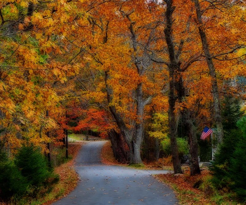 Driving Through Autumn