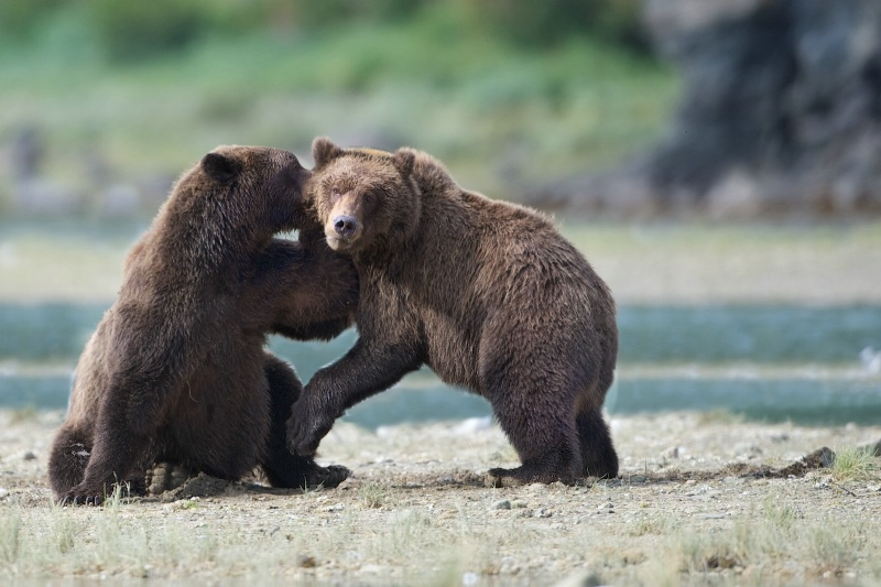 """""""Pssst...National Parks are Still Closed!"""""""