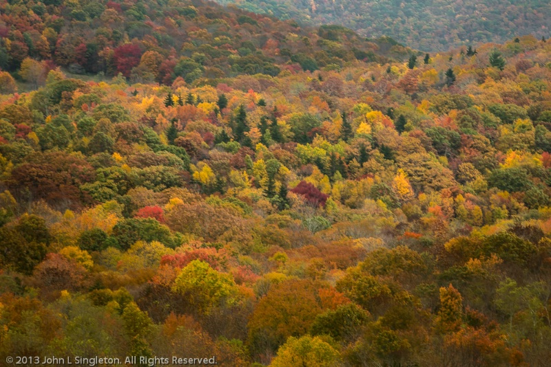 Fall in Virginia High Country