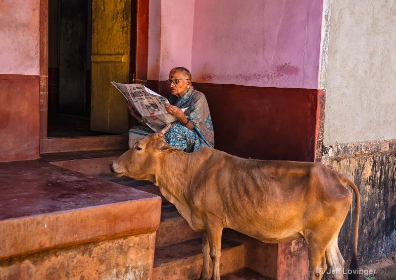 Reading the morning Paper, Gokarna, India