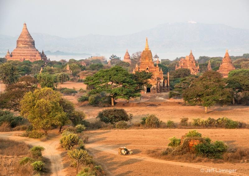 Bullock Cart and Temples, Bagan, Myanmar
