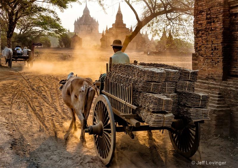 Bullock Cart, Bagan, Myanmar