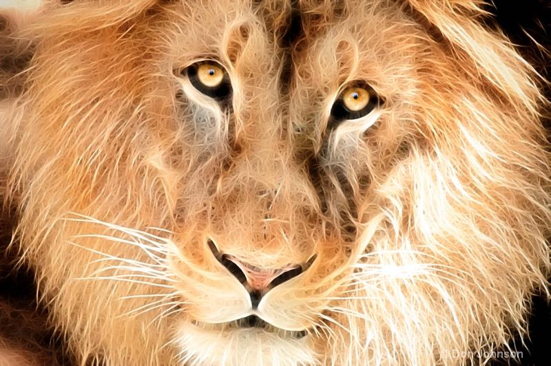 Artistic Lion Face