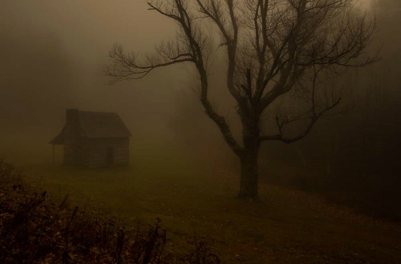 Cabin in the Mist