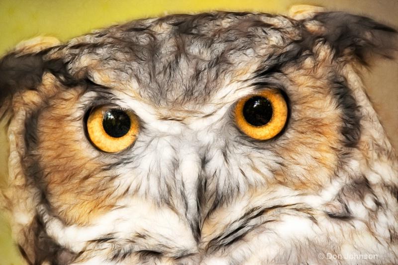 Artistic Great Horned Owl