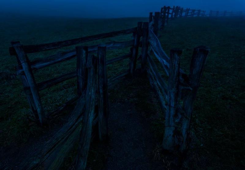 Y Gate