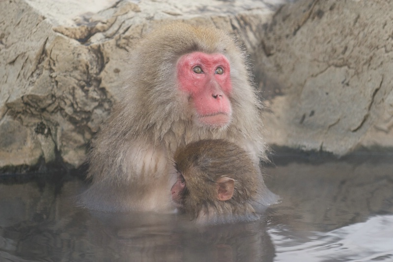 Mom and Babe in Hot Tub
