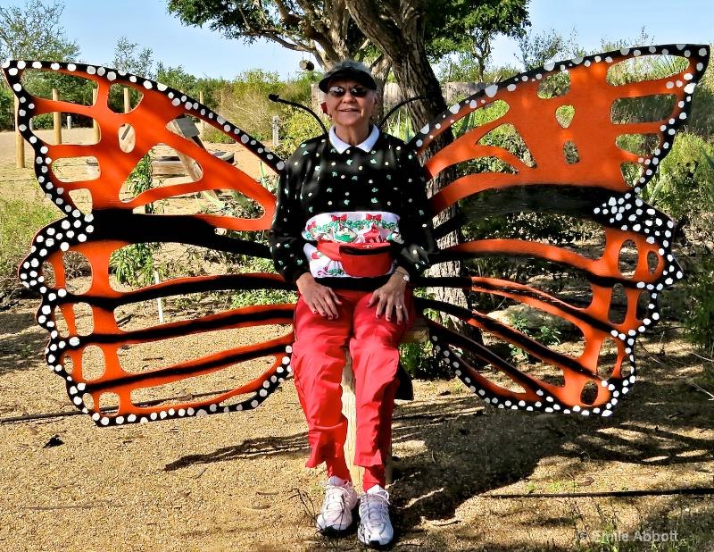 My favorite butterfly