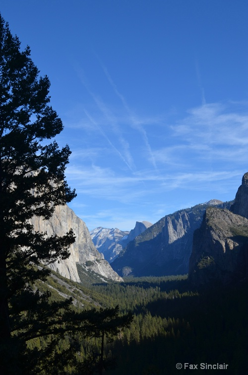 Halfdome with Tree & Clouds