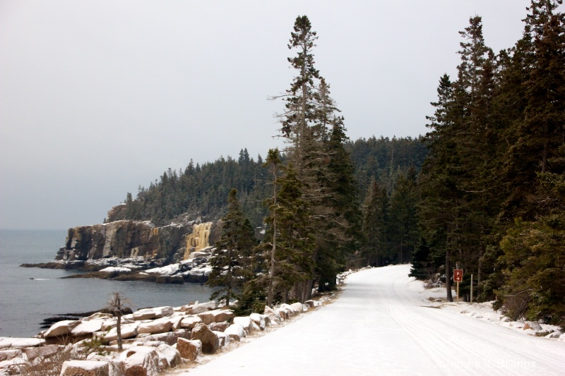 Otter Point in Winter