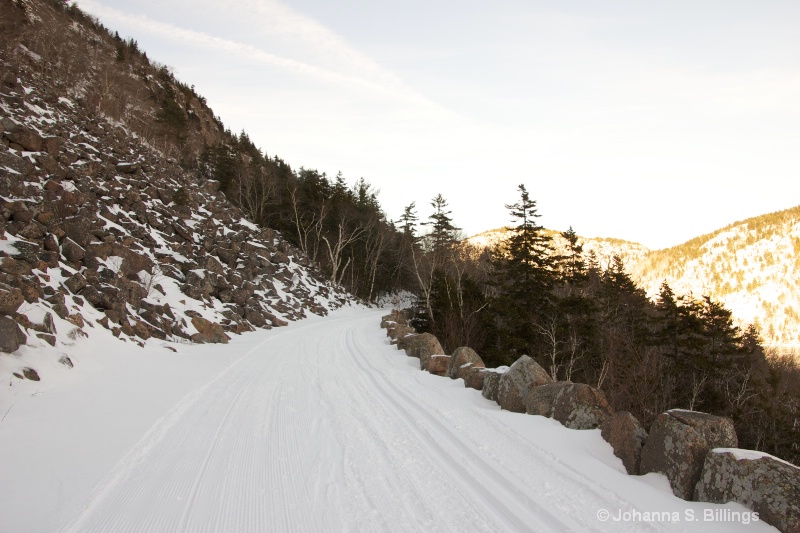 Carriage Road in Winter