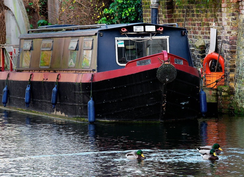 Home in Londons Canal
