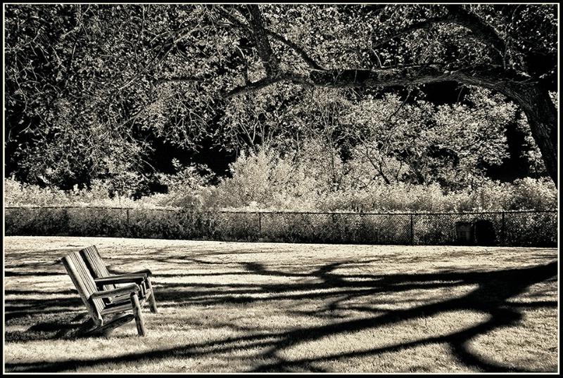 Pilgrim Monument Park, Provincetown