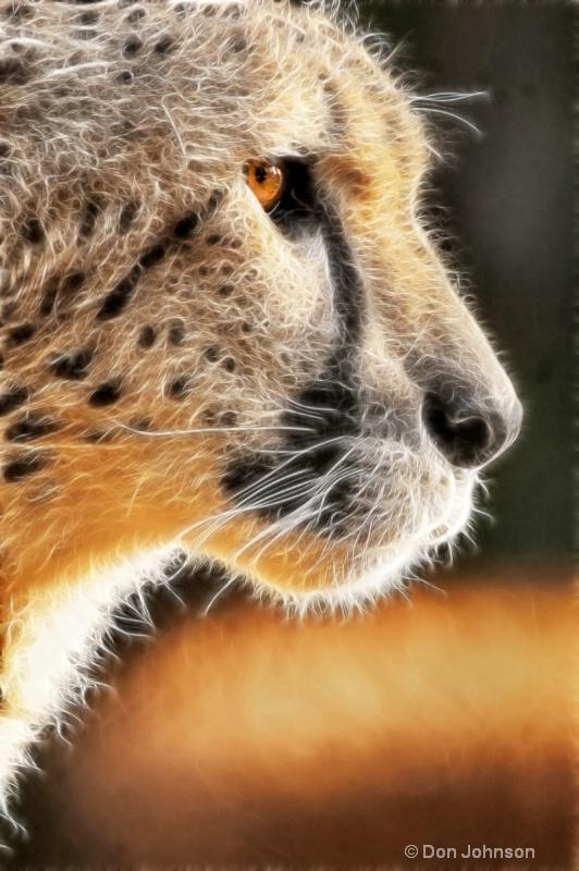 Cheetah Profile-Fractalius