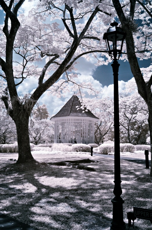 IR in the Park