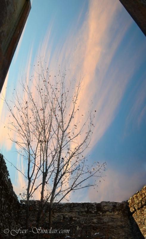 Sky Angle