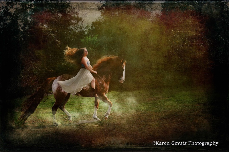 Equine Muse