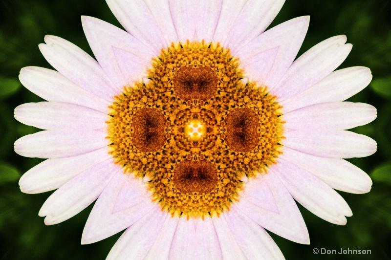 Daisy-Kaleidoscope