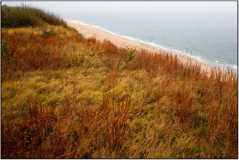 The Truro Higlands, Cape Cod