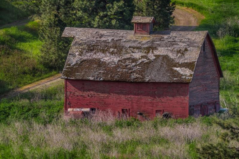 Peeling Red Barn