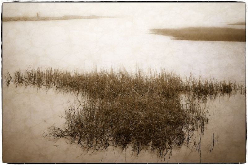 Fog at the Moors, Provincetown