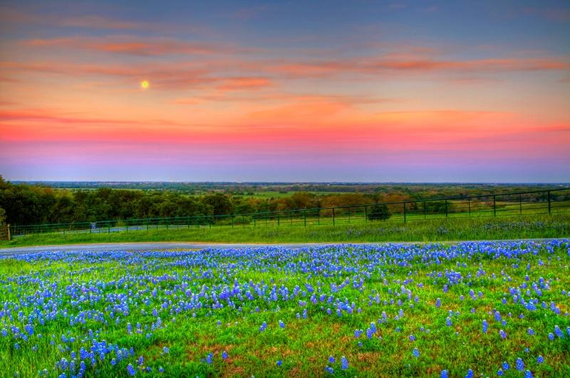 **Blue*Moonset**