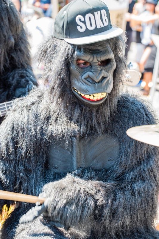 Ape Playing Drums