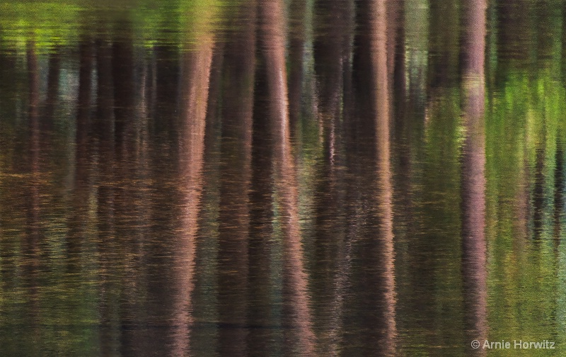 Reflections in Brown and Green