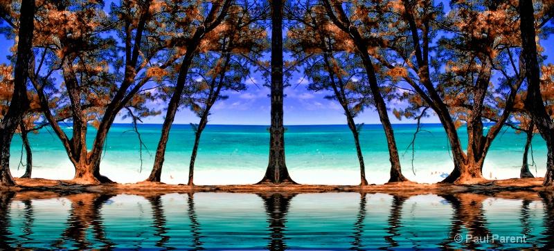 Simply Paradise