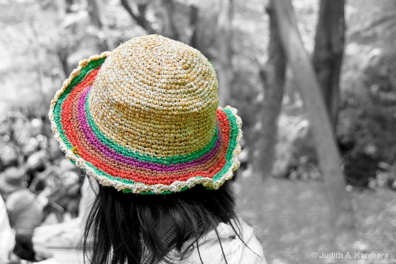 the girl in the hat 2