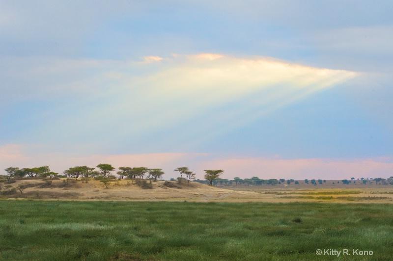 Sun Breaking Through Near Ndutu