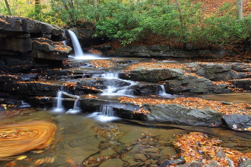 Swirling Leaves at Jonathan Falls