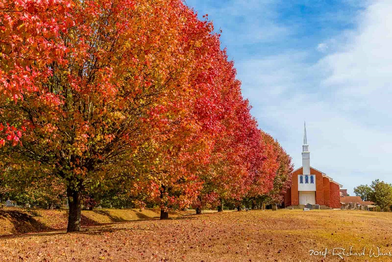 Autumn in Mississippi