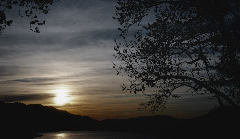 Sunset with Tree and Lake