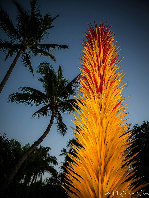 Chihuly @ Night