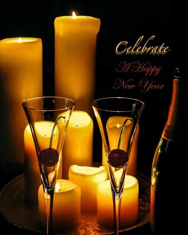 Celebrate A Happy New Year  3724